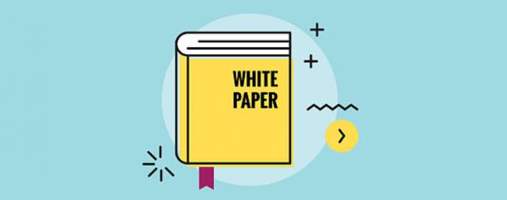 Les leads et le livre blanc