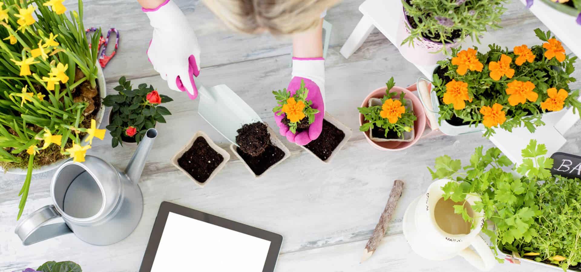 jardinagebricolage slide1 fullcontent
